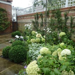 Belsize Park Classic English Garden 21