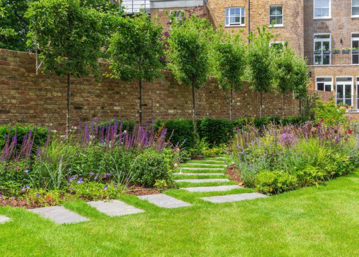 Garden Perennial Plants 3
