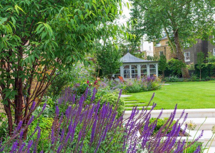 Garden Perennial Plants 5