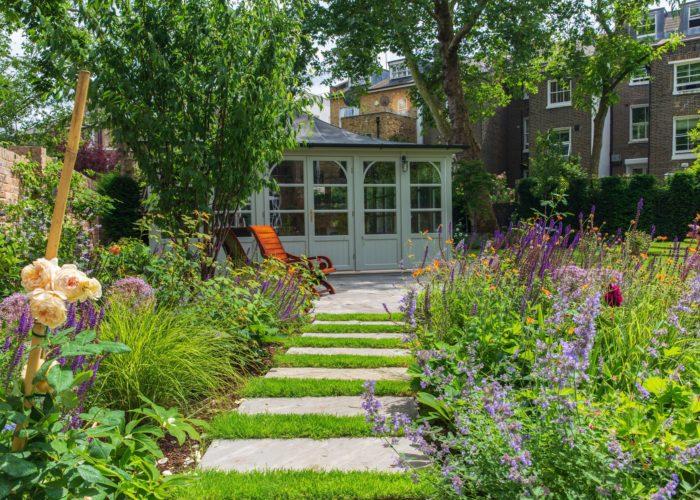 Garden Perennial Plants 6