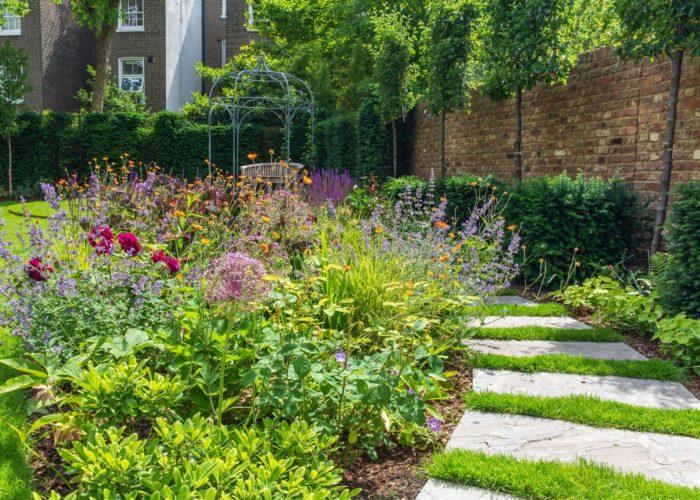 Garden Perennial Plants 7
