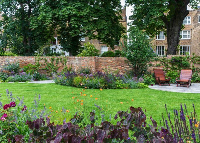Garden Perennial Plants 8