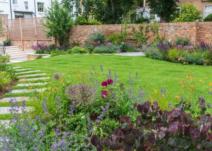 Garden Perennial Plants 9